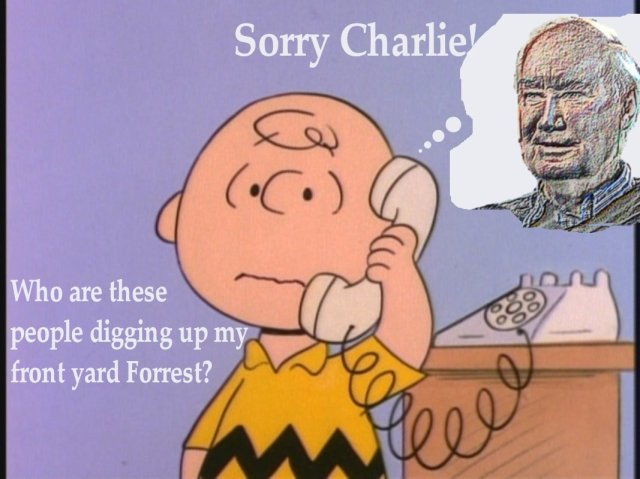 a-charlie-brown-thanksgiving-peanuts-26555198-1067-800